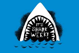 Cocoa Beach Area Honors Shark Week