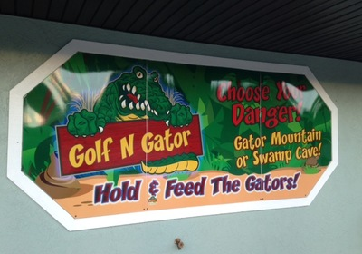 CVB Director Feature: Golf N Gator